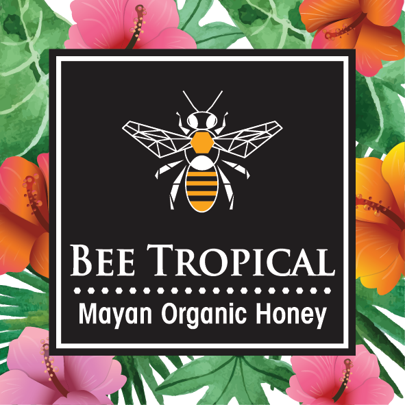 Mayan Melipona Stingless Bee Honey