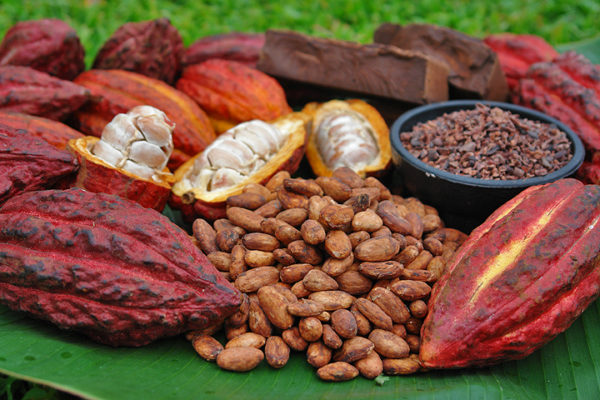 Cacao Products Mexican